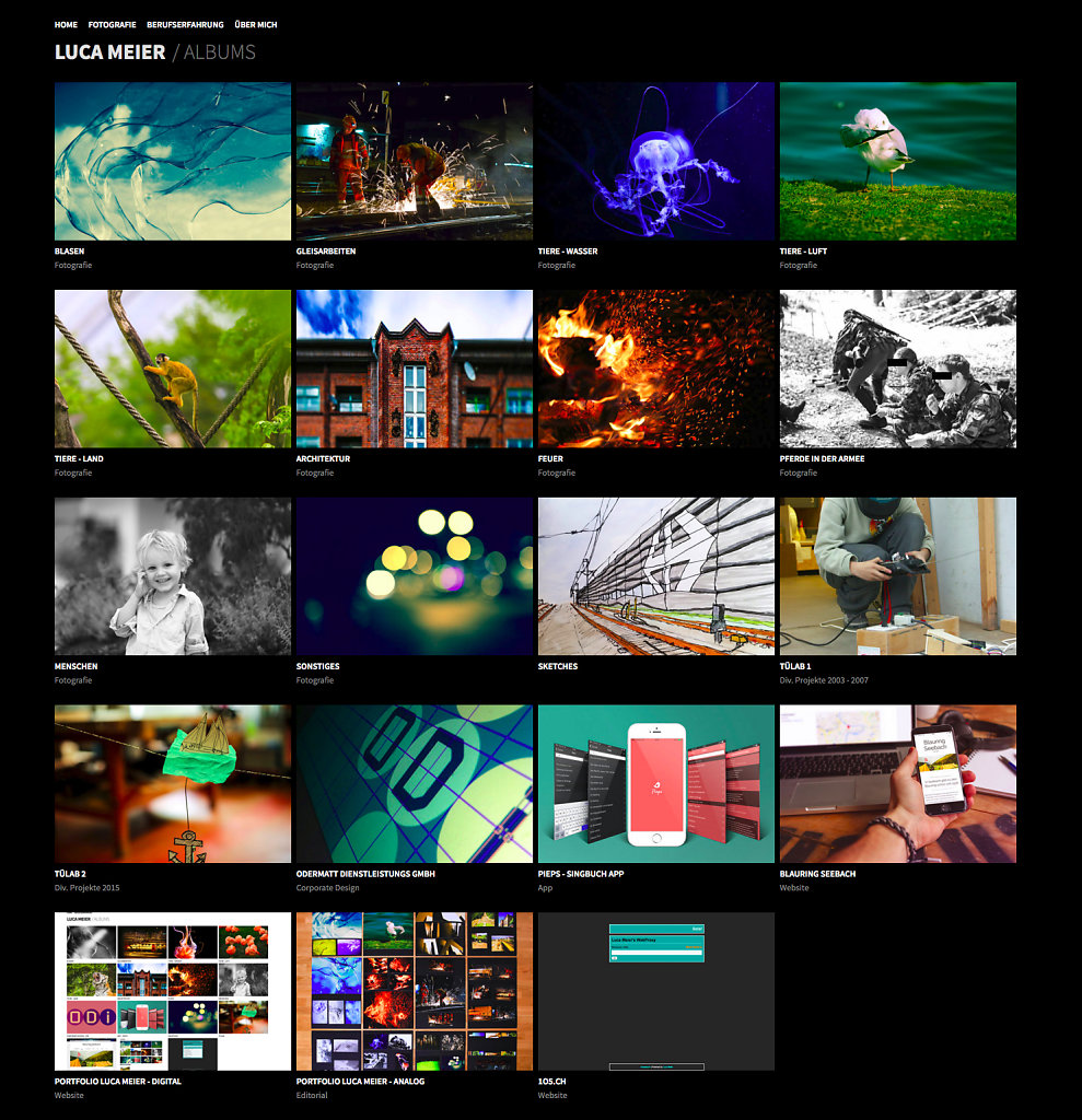 screencapture-lucameier-ch-1459713652383.jpg